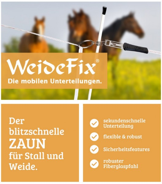 WeideFix